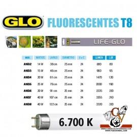 Fluorescente LIFE-GLO T8