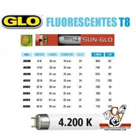 Fluorescente SUN-GLO T8